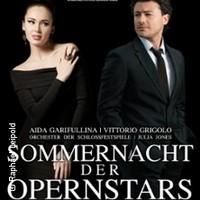sommernacht-der-opernstars-tickets_16879_133250_222x222.jpg
